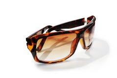 panie brown mod okularów pojedynczy white Zdjęcia Stock
