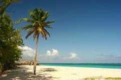 panie plażowa Samej s Fotografia Royalty Free