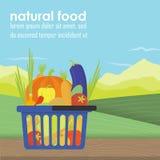 Panier à provisions complètement d'organique sain illustration libre de droits