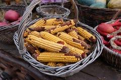 Panier avec des épis de maïs Photo libre de droits