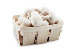 Panier avec des champignons Photo stock