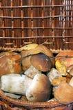 Panier avec des champignons de couche images stock