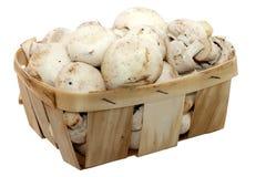 Panier avec des champignons de paris Photo stock