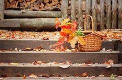 Panier avec des feuilles d'automne sur les étapes Photos libres de droits