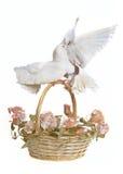 Panier avec des fleurs et des colombes de mariage Image libre de droits