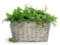 Panier avec des herbes Photo libre de droits