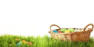 Panier avec des oeufs de pâques cachés derrière des lames d'herbe verte des gras Photographie stock