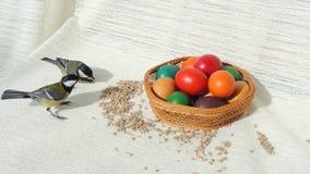 Panier avec des oeufs et des mésanges de pâques Photographie stock