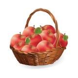Panier avec des pommes vecteur de pommes de récolte illustration de vecteur