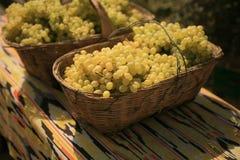 Panier avec des raisins blancs Image stock