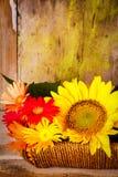 Panier avec des tournesols et des marguerites Photographie stock libre de droits