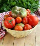 Panier avec différents types de tomates Photographie stock