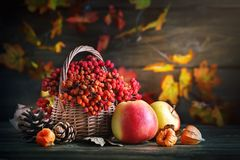 Panier avec la sorbe et les pommes sur une table en bois Encore-durée d'automne photos stock