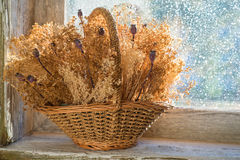 Panier avec les fleurs sèches Photos libres de droits