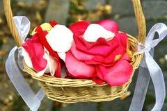 Panier avec les pétales roses Photos stock