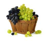 Panier complètement de divers raisins avec des feuilles et des vrilles D'isolement photographie stock