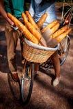 Panier complètement des baguettes sur la bicyclette dans l'allée de parc Photographie stock