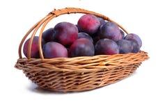 Panier complètement des prunes mûres Image libre de droits