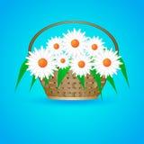 Panier d'été avec des marguerites Images stock