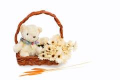 Panier de cadeau avec l'ours et les fleurs de nounours Photos stock