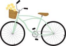 Panier de fleur de bicyclette de bicyclette Photo libre de droits