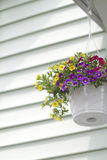 Panier de fleur de perron Image stock