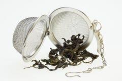 Panier de infusion de thé - thé vert chinois Images libres de droits