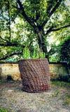 Panier de jardin photo stock
