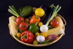 Panier de légumes Photographie stock libre de droits