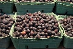 Panier de myrtille au marché de nourriture d'île de Granville Photo stock