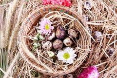 Panier de Pâques d'oeufs floral Photographie stock libre de droits