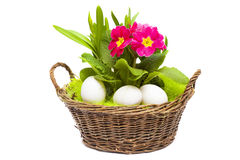 Panier de Pâques sur le fond blanc Photo libre de droits