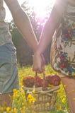 Panier de pique-nique de fixation de couples Photo libre de droits
