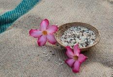 Panier de riz Photo libre de droits