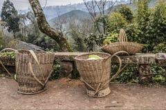 Panier de tissage en bambou Photos stock