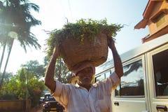 Panier de transport d'homme dans sa tête Photos stock