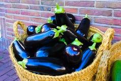 Panier des aubergines avec un fond de brique rouge photo libre de droits