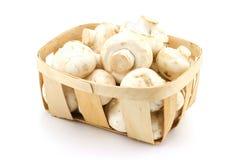 Panier des champignons de couche photo stock