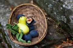 Panier des figues et des poires italiennes Images libres de droits