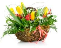 Panier des fleurs jaunes de tulipe Photo libre de droits