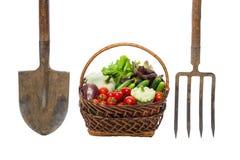 Panier des légumes à côté d'une fourche et d'une pelle d'isolement photos libres de droits