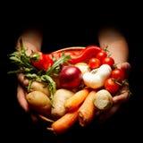 Panier des légumes Photographie stock libre de droits