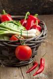 Panier des légumes frais Photographie stock libre de droits