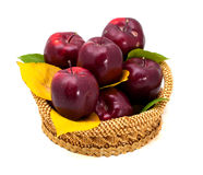 Panier des pommes rouge foncé sur un fond blanc Photographie stock