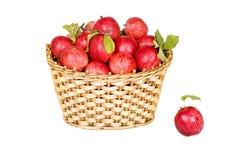 Panier des pommes rouges mûres d'isolement Photos stock
