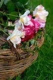 Panier des roses Photo libre de droits