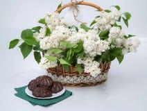 Panier du lilas blanc avec la dentelle avec du chocolat de guimauve Photo libre de droits