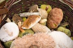 Panier en osier avec des champignons de couche Photos libres de droits