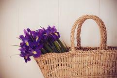 Panier en osier avec des fleurs de ressort Images stock