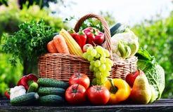 Panier en osier avec les légumes organiques crus assortis dans le jardin Images stock
